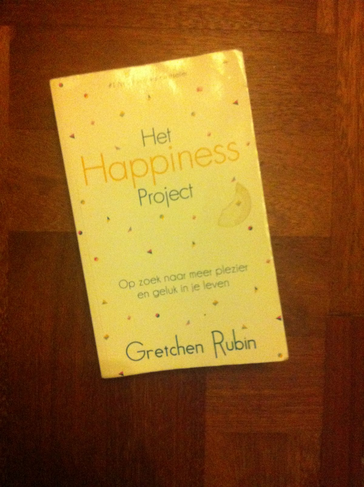Leestip: The Happiness Project